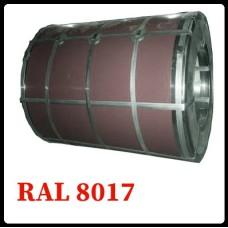 Рулонная сталь – гладкий лист с полимерным покрытием 0,5 мм 8017