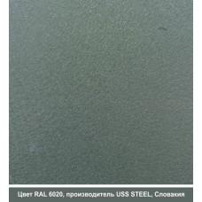 RAL 6020 | Гладкий лист — 0,45 мм с полимерным покрытием TM