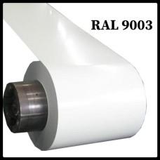 RAL 9003 | Гладкий лист с полимерным покрытием | 0,45 мм |